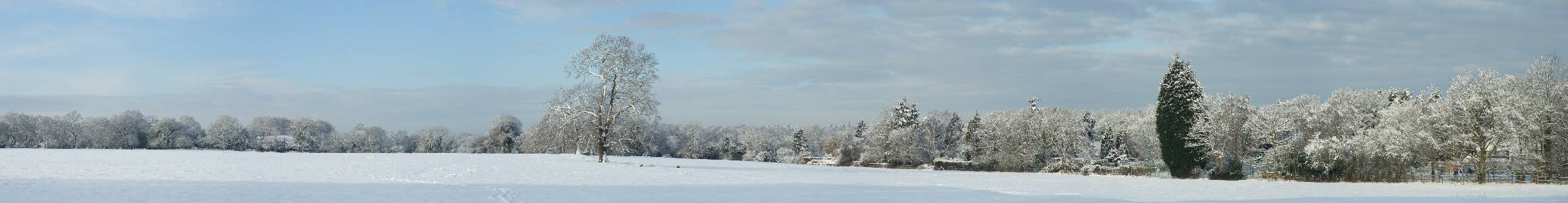Name: snowyfield. Camera make:   Model:   Software: ArcSoft Panorama Maker 4